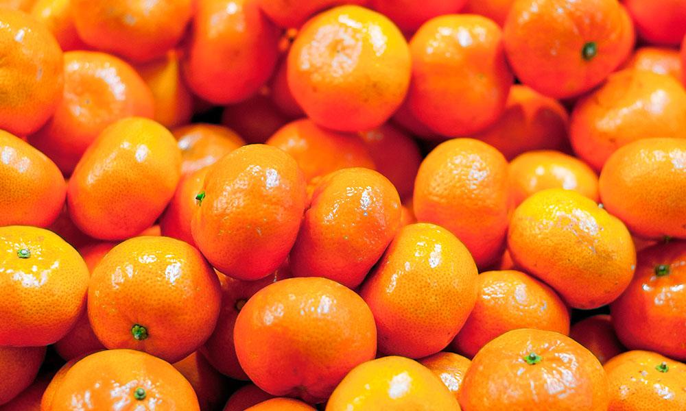 naranja benicassim restaurante torreon